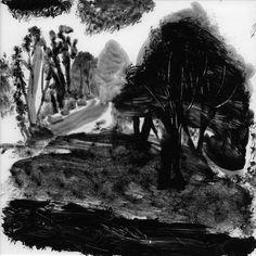 Idris Murphy Mutawintji Trees
