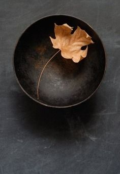 Still life simple bowl and leaf Wabi Sabi, Ikebana, Still Life Photography, Art Photography, Ivy House, Arte Floral, Im Not Perfect, Pure Products, Simple