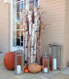 Fall, annuals, decor, entrance, door, lanterns, birch, pumpkins, gourds, landscape, design, garden