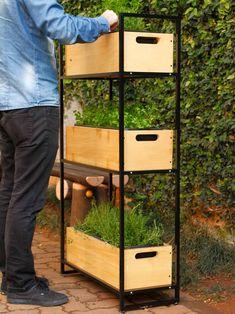horta estante, horta vertical, horta em casa