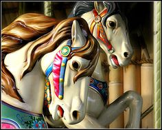 Carousels are popular features at zoos and parks. These are some of the animals on the carousel at the Tampa Zoo that I used Picknik to enhance and finish. In the set they are arranged Picnik version, original. Tampa Zoo, Tampa Florida, Merry Go Round Carousel, Carosel Horse, Amusement Park Rides, Wooden Horse, Painted Pony, All The Pretty Horses, Animals