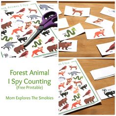 Forest Animal I Spy Counting, Mom Explores The Smokies