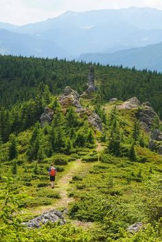 Turism Romania, Smell Of Rain, Carpathian Mountains, Tourist Places, Black Sea, Small Gardens, Haiti, Love People, Travel With Kids