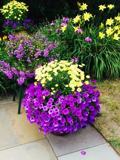 container gardening ideas in big pots Potted Plants Patio, Outdoor Plants, Garden Planters, Outdoor Gardens, Container Flowers, Container Plants, Container Gardening, Ornamental Grasses, Lawn And Garden