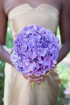 On a budget? Hydrangeas make an affordable bridesmaid bouquet requiring only a few stems and are easily in the realm of D.I.Y.!