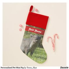 Personalized Pet Mini Pig Christmas Stocking Christmas Card Holders, Christmas Cards, Pet Christmas Stockings, Mini Pig, Santa Claus Is Coming To Town, Christmas Animals, Keep It Cleaner, Great Gifts, Pets