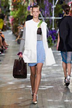 Christian Dior Spring 2014 #pfw #ss14