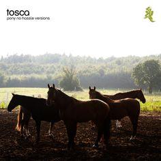 Elitsa (Kotey Extra Band Disco Version) by Tosca - Pony - No Hassle Versions Pony, Track, Horses, Animals, Pony Horse, Animales, Runway, Animaux, Ponies