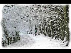 """Michael Franks - brings you a cool Yule with the title song from """"Watching The Snow"""" - YouTube"""