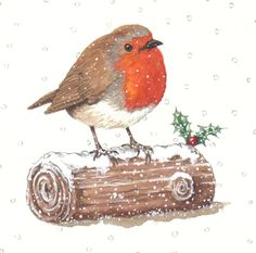 Gail Glaser - advoc- christmas Robin 2 ( Yule Log ).JPG