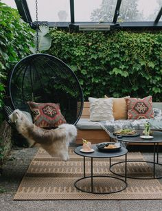 Alex Walls from The Block NZ creates the perfect outdoor nook
