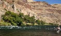 Most fly-fishers agree that Central Oregon's Lower Deschutes River — with its native rainbow trout and steelhead — is a world-class fishery. When the annual salmon fly hatch begins in late May, it becomes a see-it-to-believe-it experience. (Photo by Damien Nurre.)