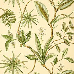 Sonora #wallpaper in #softyellow from the Seaside collection. #Thibaut #Floral