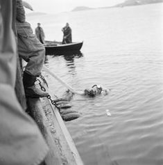 Froskemann Seljeseth i arbeid på Moloa. Pictures