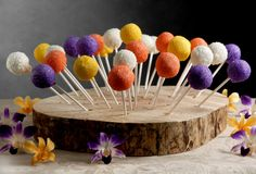 """@ Linda, for the cake pops Steven's aunt is making - Natural Wood Tree Slice Cake Pop Displays 16-18"""" with 50 Holes"""