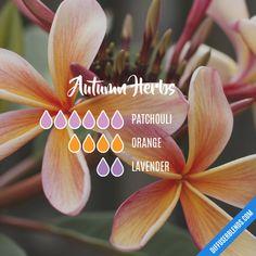 Autumn Herbs - Essential Oil Diffuser Blend