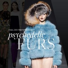 Furs are strutting their way back for this Fall! In so many great colors, like this cobalt blue!