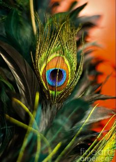Eye Greeting Card for Sale by Lana Muriyan. Our premium-stock greeting cards are x in size and can be personalized with a custom message on the inside of the card. All cards are available for worldwide shipping and include a money-back guarantee. Lord Krishna Images, Radha Krishna Pictures, Radha Krishna Photo, Krishna Art, Radha Krishna Paintings, Radha Krishna Love Quotes, Krishna Photos, Radhe Krishna Wallpapers, Lord Krishna Hd Wallpaper