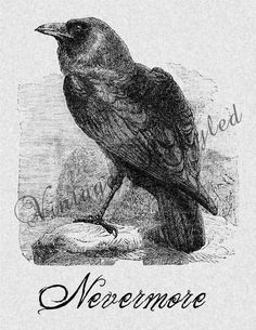 Raven Nevermore Iron On Transfer Digital Download for Burlap, Tote Bags, Tea Towels, Pillows