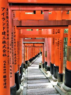 Kyoto, a historical city and former capital of Japan is home to at least 1600 temples and shrines. Find out the Best 5 that you should not miss. Buddhist Temple, Fushimi Inari Taisha, Torii Gate, Heian Period, Lotus Pond, Imperial Palace, Little Island