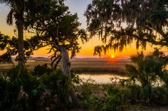 On Cumberland Island, you don't have to choose between roughing it and pampering yourself - The Washington Post