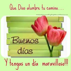 Tarjetas: Buenos Dias | Devocionales y Tarjetas Cristianas #devocionalescristianos Good Day Quotes, Quote Of The Day, Me Quotes, Good Morning Good Night, Morning Wish, Christian Devotions, Christian Quotes, Morning Humor, Morning Quotes