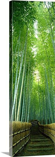 Canvas On Demand Premium Thick-Wrap Canvas Wall Art Print entitled Path Through Bamboo Forest Kyoto Japan