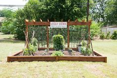 Mr. Graham loves gardening so we wanted to build a large garden for him and his family to enjoy.
