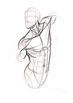 Anatomy Drawing Reference 25 ordinary Drawing Anatomy for Beginners Human Anatomy Drawing, Gesture Drawing, Body Drawing, Drawing Poses, Life Drawing, Drawing Practice, Drawing Art, Male Figure Drawing, Figure Sketching