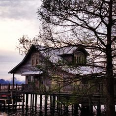 Fishing camp False River ,LA.  I'd love to vacation here