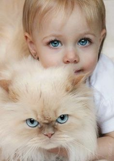 The color of the eyes is just amazing.though the poor kitty doesn't seem to be too happy.very cute. Tap the link for an awesome selection cat and kitten products for your feline companion! Animals For Kids, Animals And Pets, Baby Animals, Cute Animals, Beautiful Cats, Beautiful Children, Beautiful Babies, Gorgeous Eyes, Cute Kids