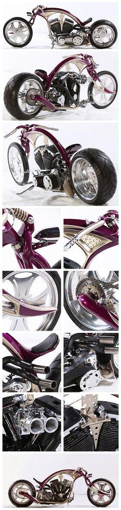 #renenijdam #custombike #art