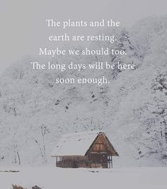 Winter Time, Earth, Snow, Plants, Outdoor, Quotes, Outdoors, Quotations, Plant