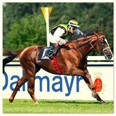 Erlebe hautnah ein spannendes Pferderennen an der Galopprennbahn vor den Toren Münchens! $15