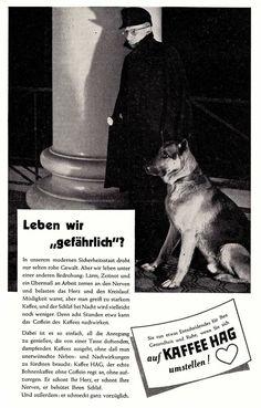 1958 Kaffee-Hag Wachmann Schäferhund 17x25 cm original Printwerbung