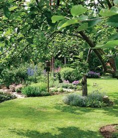 Plants, Gardens, Garden, Outdoor Gardens, Plant, House Gardens, Planets