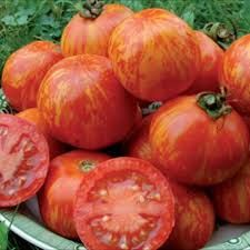 Organically Grown nonGMO Heirloom Red Zebra Tomato by MertieMaes, $3.00