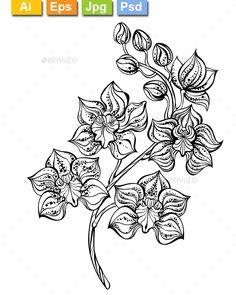 Contour Orchid