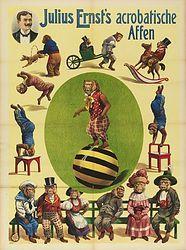 circus, monkeys, striped ball