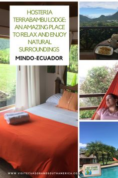 Hosteria Terrabambu Lodge: un lugar increíble para relajarse y disfrutar de un entorno natural en Mindo. - Visit Ecuador and South America Best Travel Sites, Spanish Speaking Countries, Travel Dating, House Restaurant, Galapagos Islands, Just Dream, How To Speak Spanish, Plan Your Trip, Great View