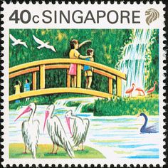 Great White Pelican stamps - mainly images - gallery format