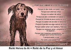 Esta es otra barbaridad de nuestro sistema. Algo estamos haciendo mal cuando hay perros abandonados en las calles. INFO http://cursoshao.blogspot.com.es/ Por un mundo pacífico y feliz!!