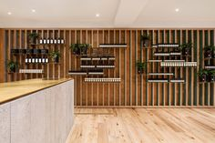 Aesop Montreal Mile-end by Naturehumaine