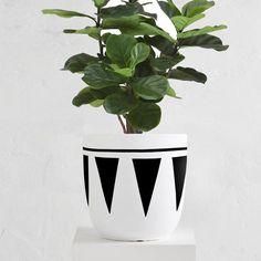 Cleo Planter Pot