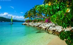 Ocho Rios, Jamaica | (c) Lizzy Davis Photography