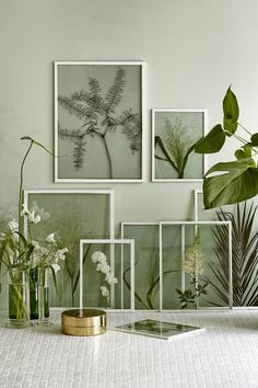 Bring the outdoors in for a fresh take on wall decor. Teri from @thelovelydrawer has all the inspiration you need to bring greenery into your space in a modern and contemporary way. You'll be on your way to creating a clever gallery wall in no time!