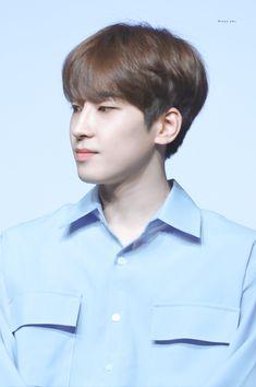 Woozi, Jeonghan, Park Bo Gum Wallpaper, Adore U, Seventeen Wonwoo, Funny Boy, Pledis 17, Pledis Entertainment, Seungkwan