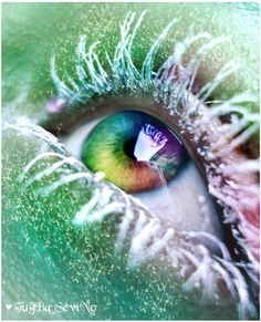 Eye Candy by intano.deviantart.com on @deviantART