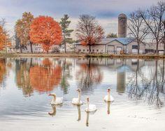 Silver Lake Morning - ID: 14239592 © Frank  Doherty