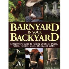Barnyard in Your Backyard: A Beginner's Guide to Raising Chickens, Ducks, Geese, Rabbits, Goats, Sheep, and Cattle (Paperback) http://www.amazon.com/dp/1580174566/?tag=pint-test-21 1580174566